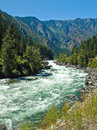 A river flowing through a mountain forest wenatchee washington usa Royalty Free Stock Images