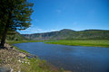 River Flows through Yellowstone Royalty Free Stock Photo