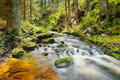 The river in the forest hdr runs over boulders primeval Royalty Free Stock Photography