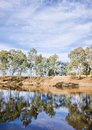 River gum trees reflecting in river Royalty Free Stock Image