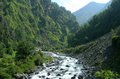 River in the high himalayas india mountains and forests tibetan Royalty Free Stock Image