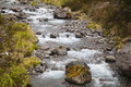 River landscape in New Zealand Royalty Free Stock Photo