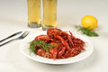 River lobster on white tablecloth with beer dill and lemon Royalty Free Stock Photos