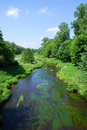 River with lush greenery Royalty Free Stock Photo