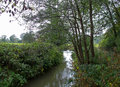 River medway at forest row in east sussex just a few miles from the source Stock Image