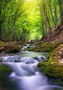 River in mountain forest. Royalty Free Stock Photos