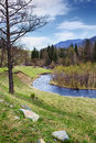 River of mountains altai fields and Stock Image