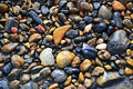 River pebbles wet on the riverside Royalty Free Stock Images