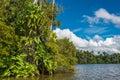 Río selva