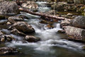River rapids near crabtree falls in the george washington national forest in virginia nelson county located off of blue ridge Royalty Free Stock Photo