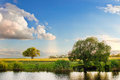 River sky summer tree landscape nature forest Royalty Free Stock Photo