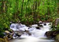 River in the smoky mountains cascades of tennessee usa Stock Image
