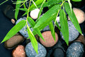 The River Stones spa treatment scene and bamboo leaves with rain Royalty Free Stock Photo