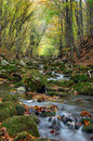 River stream in high mountain in autumn Stock Photo