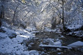 River stream in winter Royalty Free Stock Images