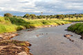 River of tanzania with trees on a cloudy day Stock Photography