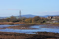 River teign at low tide Stock Images