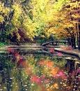 Río y en otoño