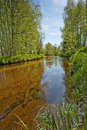 River Vltava in the national park Sumava, Europe Stock Photography