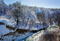 River in winter forest sunny Royalty Free Stock Photo