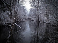 River in winter tranquil landscape with snow covered branches on a gloomy evening Stock Photography