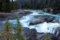River in woods oho national park bc canada Stock Images