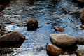rivers and rocks Royalty Free Stock Photo