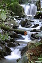 Rivulet Stock Images