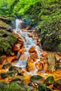 Rivulet sucha kamenice in the bohemian switzerland national park czech republic Royalty Free Stock Photos