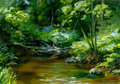 Rivulet thick forest oil painting sketch Stock Images