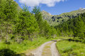 Road in alpine meadow landscape of high mountains on a clear summer sunny day northern italy Royalty Free Stock Photography