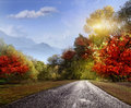Road, asphalt, autumn Stock Photo
