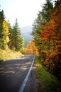 Road in autumn long surrounded by leaves colored red and yellow Royalty Free Stock Images
