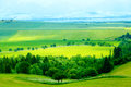 Road in a beautiful land with meadows. Slovakia, Central Europe.