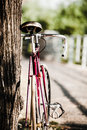 Road bicycle on city street green park and trees outdoors urban scene bike under a tree copy space and shallow depth of field Royalty Free Stock Photo