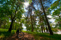 Road bicycle on the rural road in the forest sun shining through leaves Royalty Free Stock Image