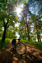Road bicycle on the rural road in the forest sun shining through leaves Stock Photos