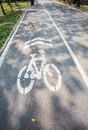 Road for bicycles sunny park Royalty Free Stock Image