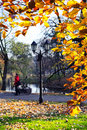 The road in the city park in autumn riga latvia Stock Image