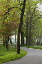 Road with curve in Dutch landscape