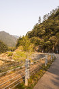 Road curves and brook the along the stream this photo was taken in nanxi river scenic area yongjia county zhejiang province china Stock Images