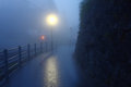 Road in dawn wengen switzerland fog august Royalty Free Stock Photos