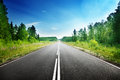 Road in deep forest russia Royalty Free Stock Photo