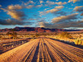 Road in desert Royalty Free Stock Images