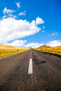 Road in Dobrogea Royalty Free Stock Image
