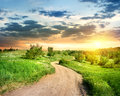 Road in the evening country spring field Stock Image