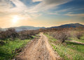 Road in evening to the mountains on a clear autumn Royalty Free Stock Photography
