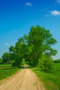 Road on field small with trees Royalty Free Stock Photo