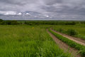 Road in field and stormy clouds Royalty Free Stock Photo