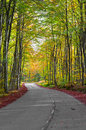 Road in the forest in autumn fall colors Royalty Free Stock Images